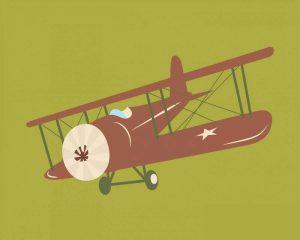 Plane VI