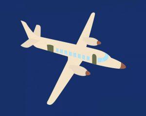 Plane VII
