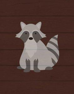Woodland Raccoon