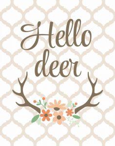 Hello Dear