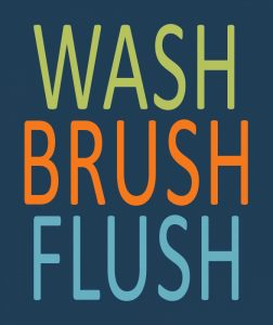 Fish Wash Brush Flush