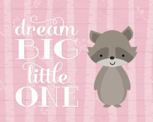 Dream Big Raccoon – Pink