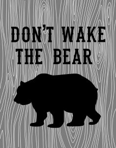 Dont Wake the Bear