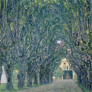 Allee im Park von Schloss Kammer