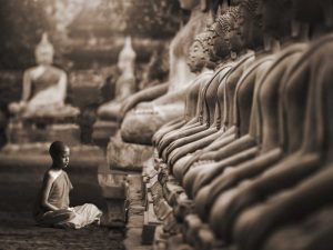Young Buddhist Monk praying, Thailand (sepia)