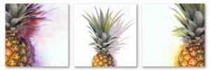 Pineapple Tri II