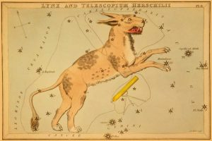 Lynx and Telescopium Herschilii, 1825