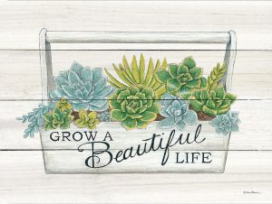 Beautiful Life Succulents