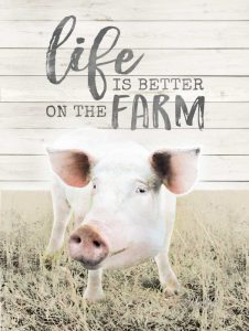 Life is Better on the Farm Pig