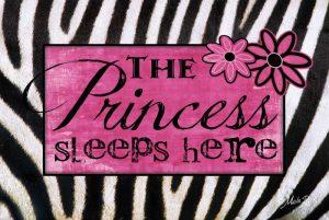 Princess Sleeps Here