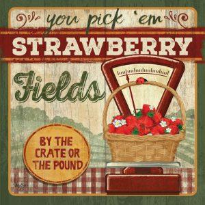 You Pick Em Strawberries