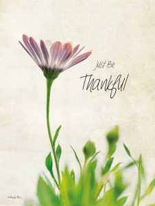 Just be Thankful