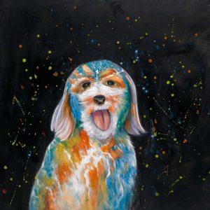 Colorful Labradoodle Dog