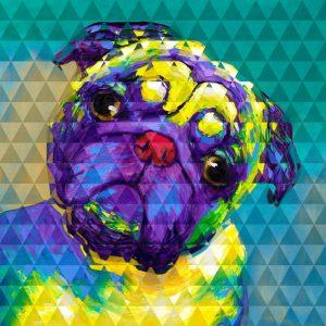 Geometric Curious Pug