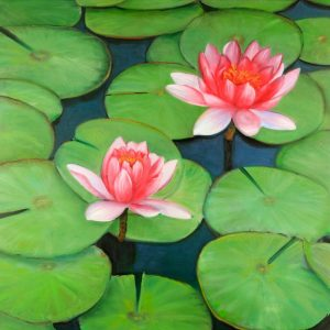 Lotus Flowers in a Swamp