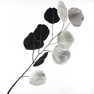 Grayscale Branch with Round Shape Leaves