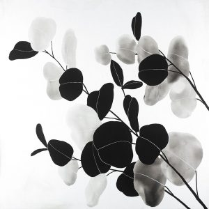 Grayscale Branches with Round Shape Leaves