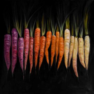 Different Coloured Carrots Vegetable