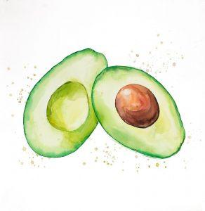 Watercolor Open Avocado