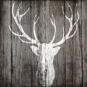 Sophisticated Deer on Wood