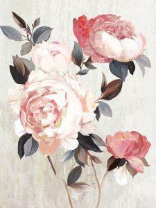Bloom of Blush