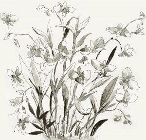 Cherishing Flora