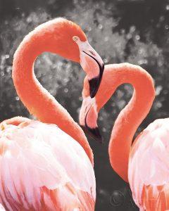 Flamingo II on BW