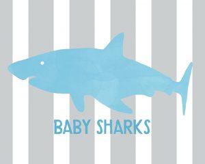 Baby Sharks I