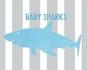 Baby Sharks II