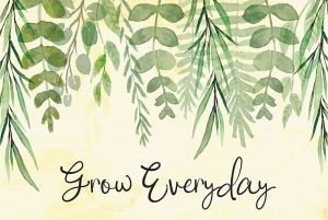 Grow Everyday