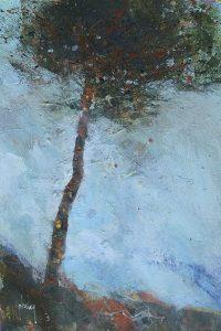 Lone Moorland Pine