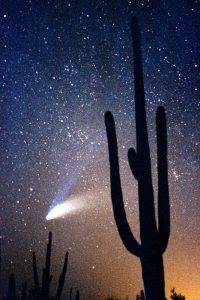 Hale Bop Comet