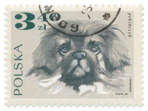 Poland Stamp III on White