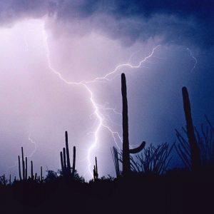 Electric Desert IV