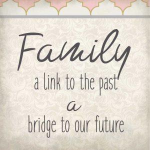 Family Begins 2