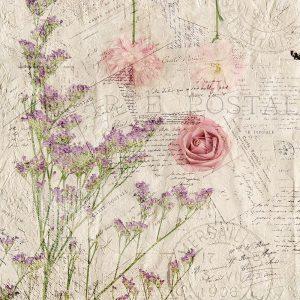 Carte Postal Florals 1