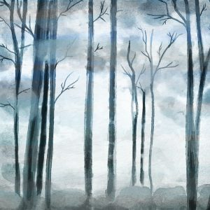 Shrouded Forest