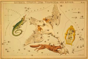 Lacerta, Cygnus, Lyra, Vulpecula and Anser, 1825