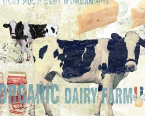 ORGANIC DAIRY FARM
