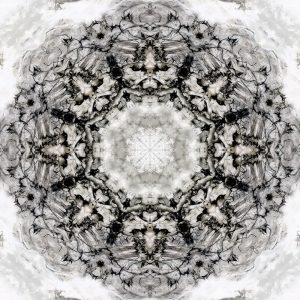 Black White Kaleidoscope