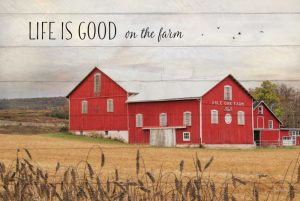 Life is Good on the Farm