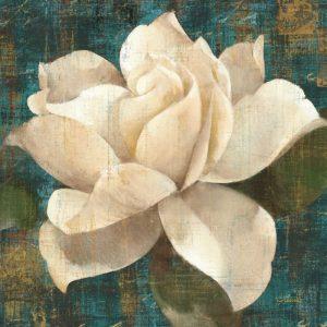 Gardenia Blossom