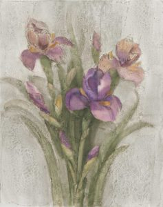 Purple Iris Garden on Grey