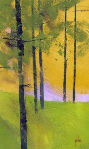 Simple Spruce