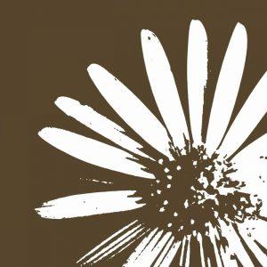 Graphic Flower 2