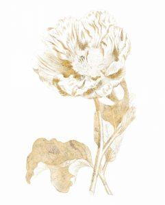 Gilded Botanical VII
