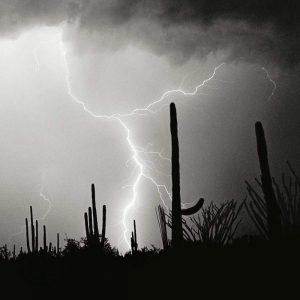 Electric Desert IV – BW