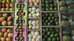 UAE, Abu Dhabi Various fruit in boxes at market