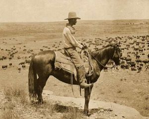 A Texas cowboy, 1907 – Sepia