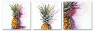 Pineapple Tri I